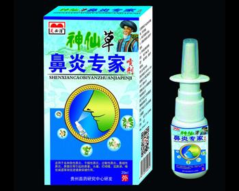 神仙草 鼻炎专家